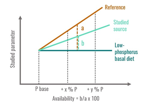 Method used to calculate phosphorus availability